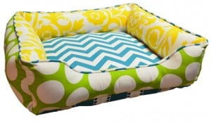 Small Cuddle Bed Turquoise Yellow Chartreuse